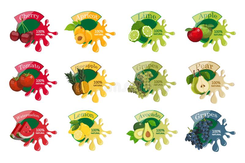Éclaboussure avec des fruits Nourriture saine Diff?rents types des fruits et de baies naturels d?licieux Genre différent de sain  illustration libre de droits