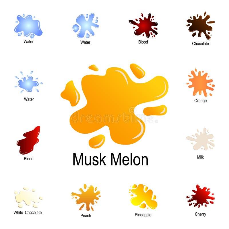 éclaboussure d'icône de jus de cantaloup Ensemble détaillé d'éclaboussure de couleur Conception graphique de la meilleure qualité illustration de vecteur