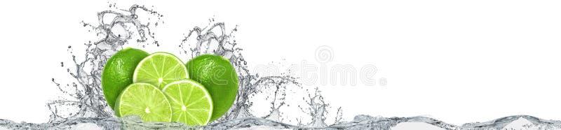 Éclaboussure de chaux et d'eau sur le fond blanc illustration stock