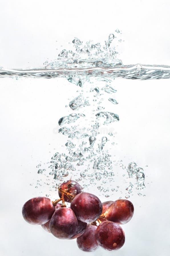 Éclaboussure de fruit de raisin sur l'eau image stock
