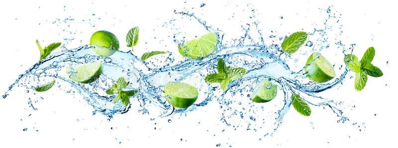 Éclaboussure de l'eau avec les feuilles en bon état images libres de droits