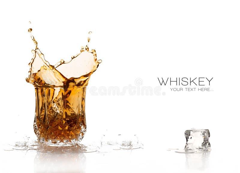 Éclaboussure de whiskey d'isolement sur le fond blanc images libres de droits