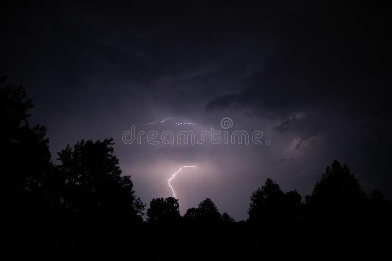 Éclairage et arbres 4 image stock
