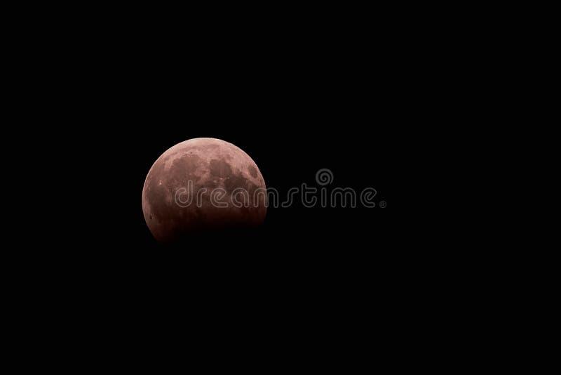 Éclipse lunaire Lune de sang photographie stock libre de droits
