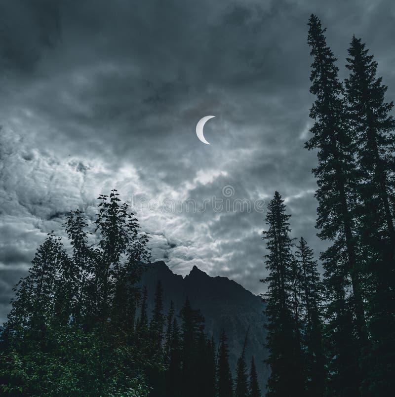 Éclipse solaire partielle du 21 août 2017, du Québec, Canada image libre de droits