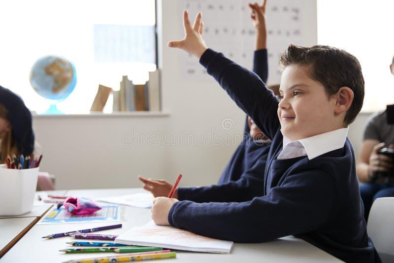 Écolier avec la trisomie 21 se reposant à un bureau soulevant sa main dans une classe d'école primaire, fin, vue de côté images stock