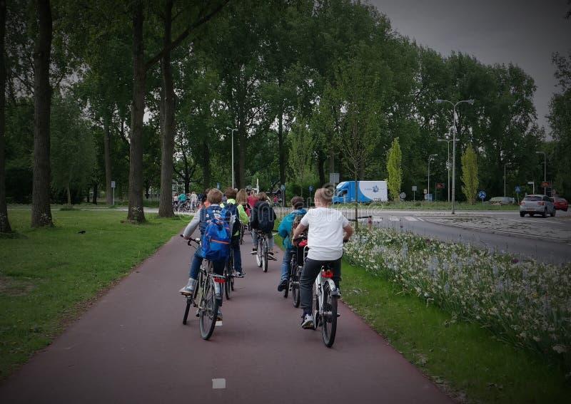 Écoliers néerlandais sur une bicyclette Basisschoolkinderen de fiets op photographie stock libre de droits