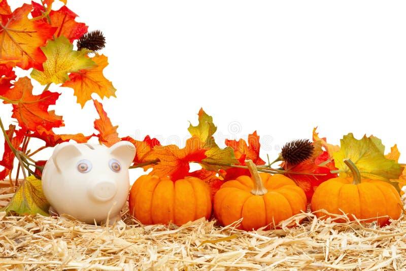 Économies d'automne avec la tirelire et les citrouilles et les feuilles d'automne sur le foin de paille isolé sur le blanc photos libres de droits