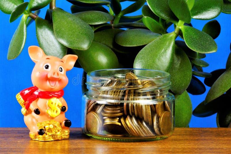 Économisez de l'argent, restez à la Banque Il est raisonnable de chercher des avantages, de planifier efficacement la gestion fin image libre de droits