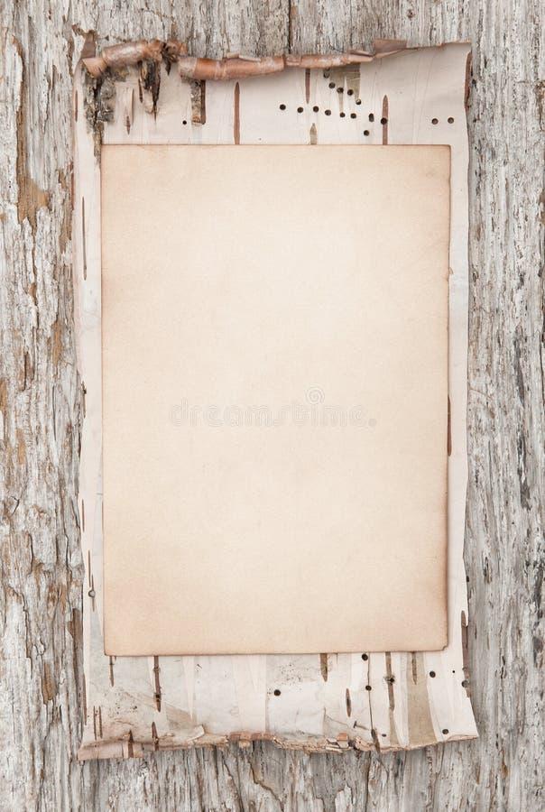 Écorce âgée de papier et de bouleau sur le vieux bois photos libres de droits