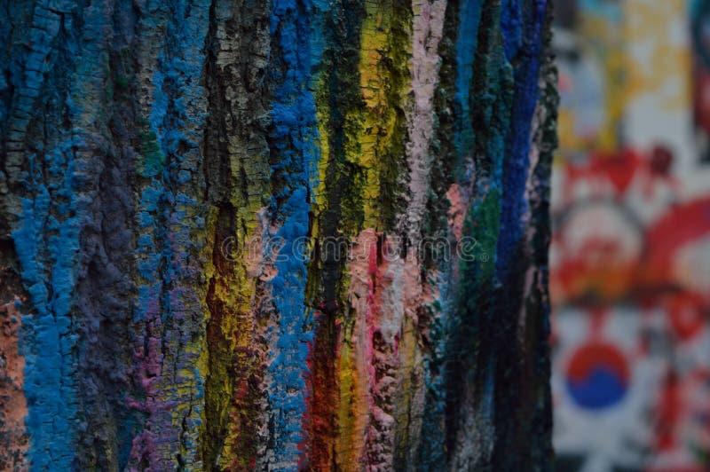 Écorce colorée d'arbre photographie stock