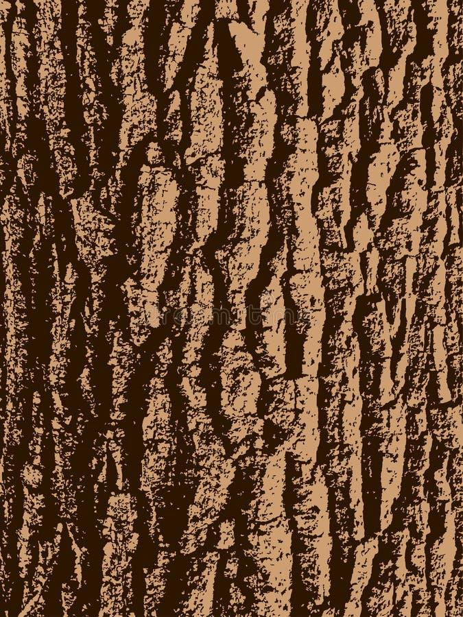 Écorce d'arbre de chêne illustration de vecteur