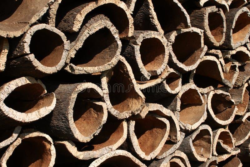Écorce de chêne de liège image libre de droits