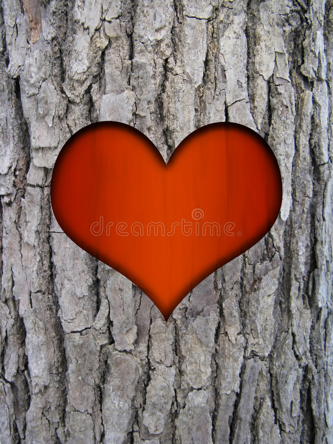 Écorce de joncteur réseau et coeur d'amour illustration de vecteur