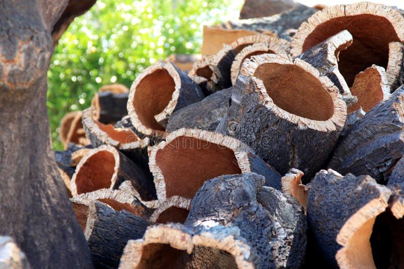 Écorce empilée près de chêne de liège dans l'Alentejo, Portugal photos libres de droits