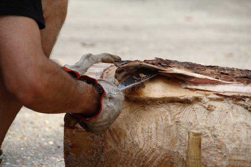 Écorcez le tronc avec la gouge images stock