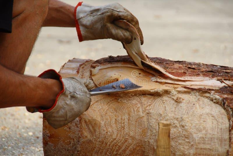 Écorcez le tronc avec la gouge image libre de droits