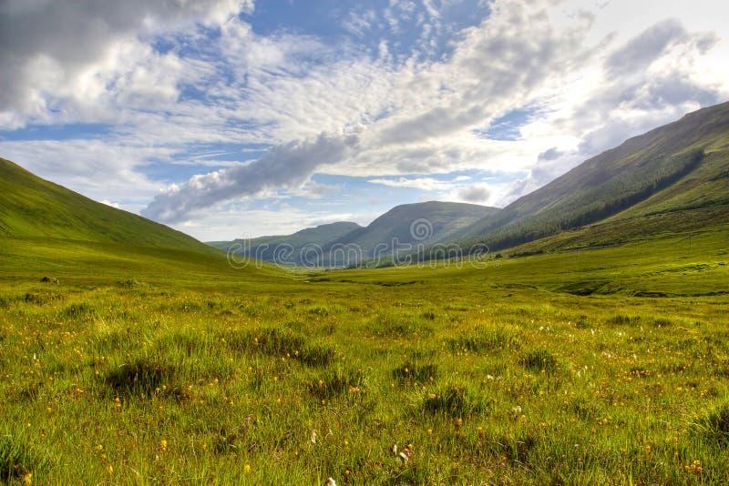 écossais des montagnes photo libre de droits