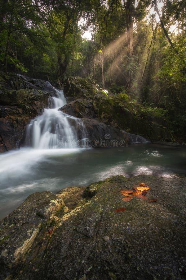 Écoulement de l'eau dans la forêt à la cascade de Jedkod photographie stock