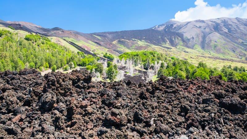 Écoulement de lave durci sur la pente du volcan de l'Etna photo libre de droits