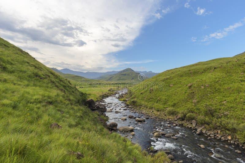 Écoulement de rivière de la montagne dans la vallée verte photographie stock libre de droits
