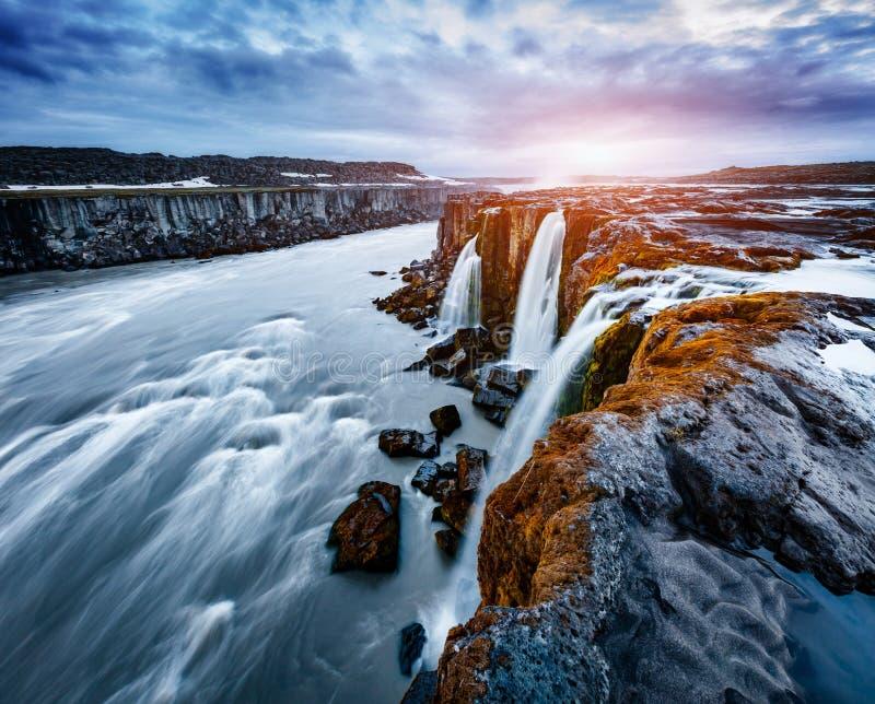 Écoulement rapide de cascade puissante de Selfoss de l'eau Touriste populaire à photographie stock libre de droits