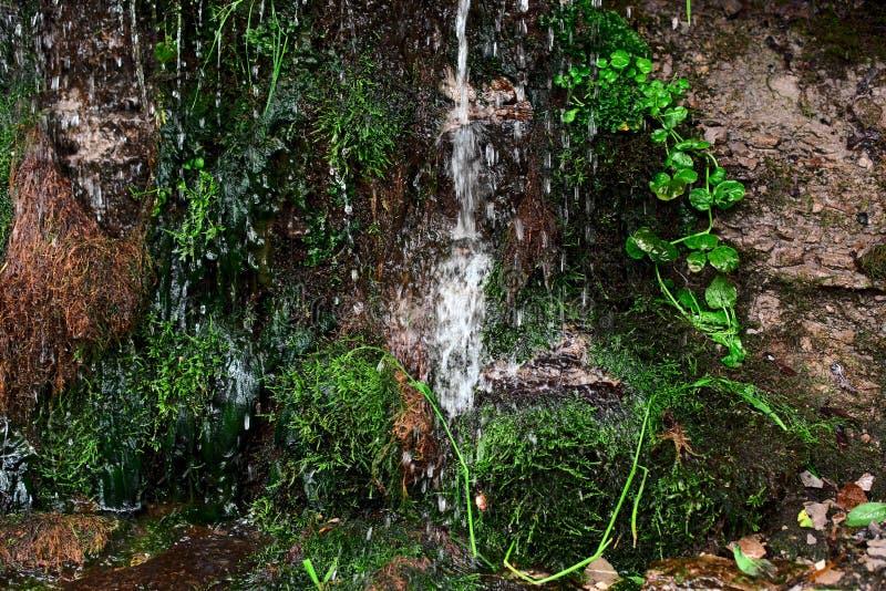 Écoulements d'eau photo libre de droits