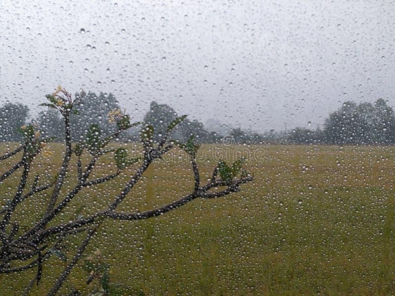 Écoutez la pluie photographie stock