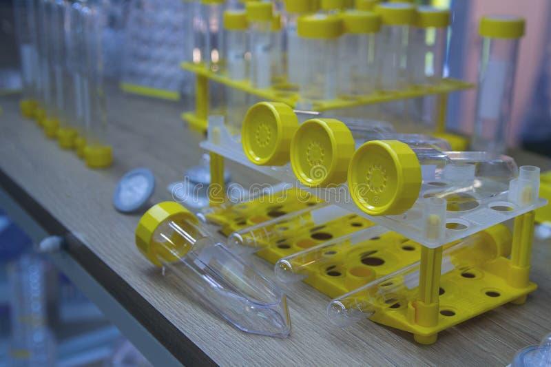Écouvillons pour les laboratoires médicaux dans la fenêtre image libre de droits