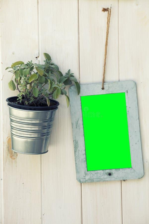 Écran de vert de cadre de tableau et plante en pot sur la surface en bois Png disponible photo stock