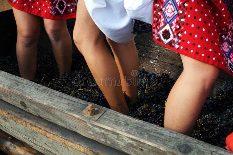 Écrasement des raisins photo stock