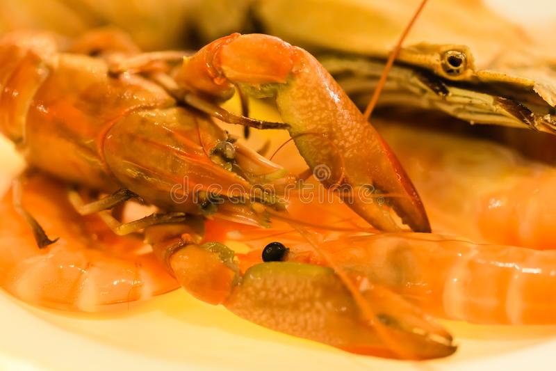 Écrevisses crues de fruits de mer et vue bouillie de plan rapproché de crevette photo libre de droits