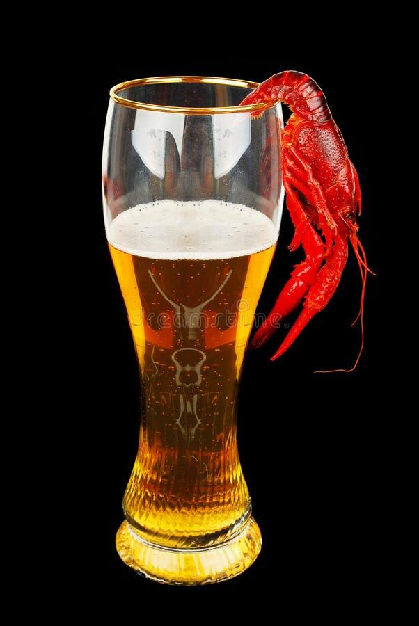Écrevisses et bière photo stock