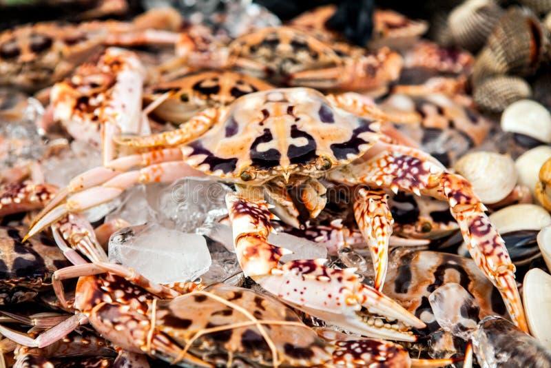 Écrevisses fraîches sur la poissonnerie au Bornéo Malaisie image stock