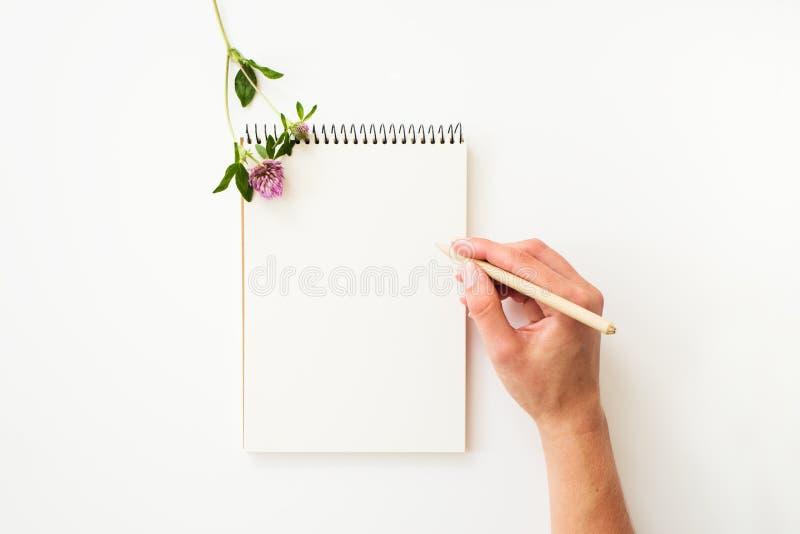 Écriture de main de femme sur le carnet de papier photographie stock libre de droits
