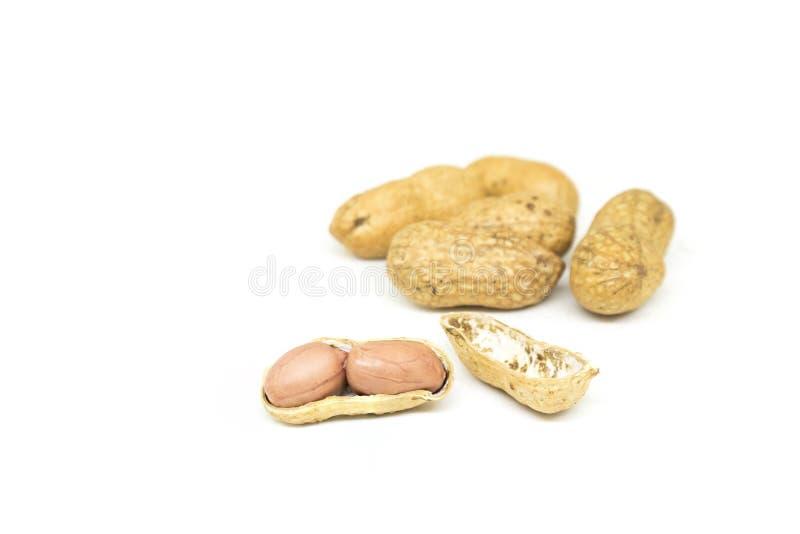 Écrous rôtis avec des coquilles de noix d'isolement sur le fond blanc photo stock