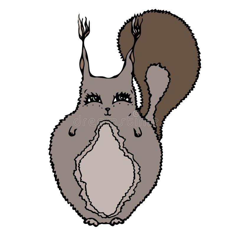 Écureuil adorable mignon D'isolement sur un vecteur tiré par la main de croquis de fond de bande dessinée blanche de griffonnage illustration de vecteur