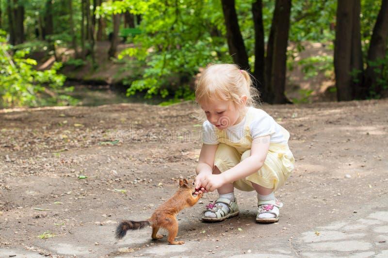 Écureuil alimentant de petite fille photographie stock