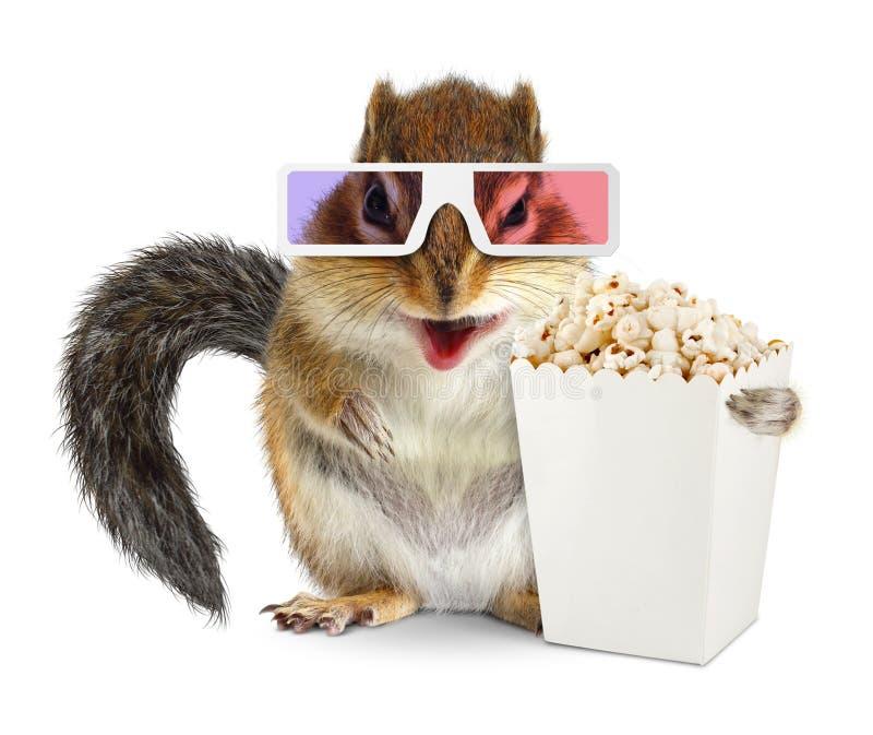 Écureuil drôle avec le seau vide de maïs éclaté et les verres 3d d'isolement photo stock