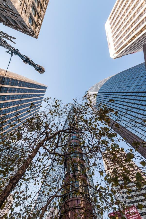 Édifices hauts à San Francisco - angle dramatique photos stock