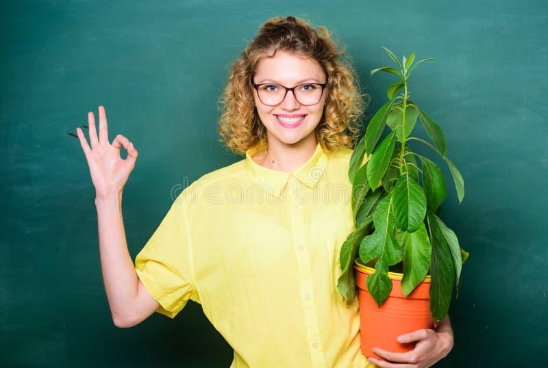 Éducation de botanique Avantages de verdure Botanique et concept de ballot Le fond de tableau de maître d'école de femme portent  photo stock