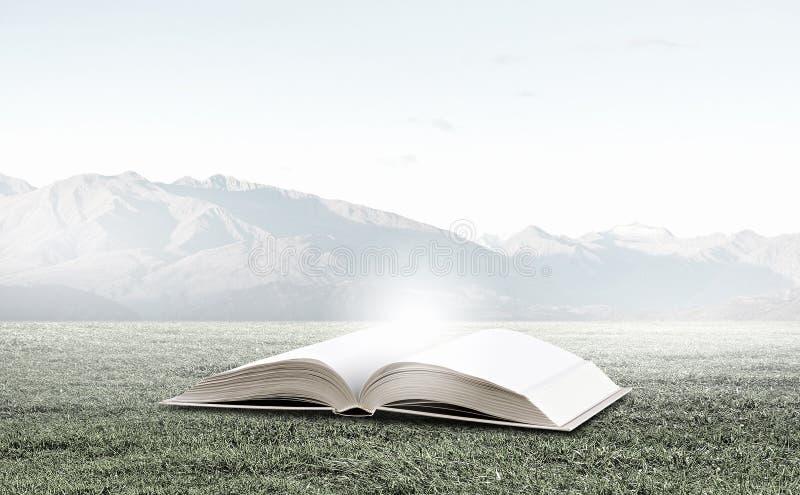 Download Éducation De Lecture Et D'individu Image stock - Image du herbe, concept: 56480231