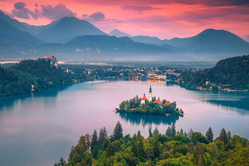 Église de pèlerinage et lac stupéfiants saignés au coucher du soleil, Slovénie, l'Europe images libres de droits
