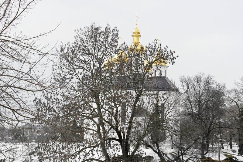Église en parc en hiver image libre de droits