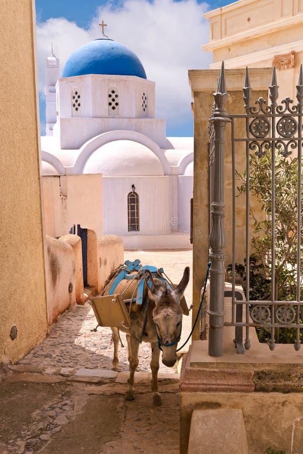 Église et âne de Santorini Grèce utilisés pour transporter des bagages aux hôtels images stock