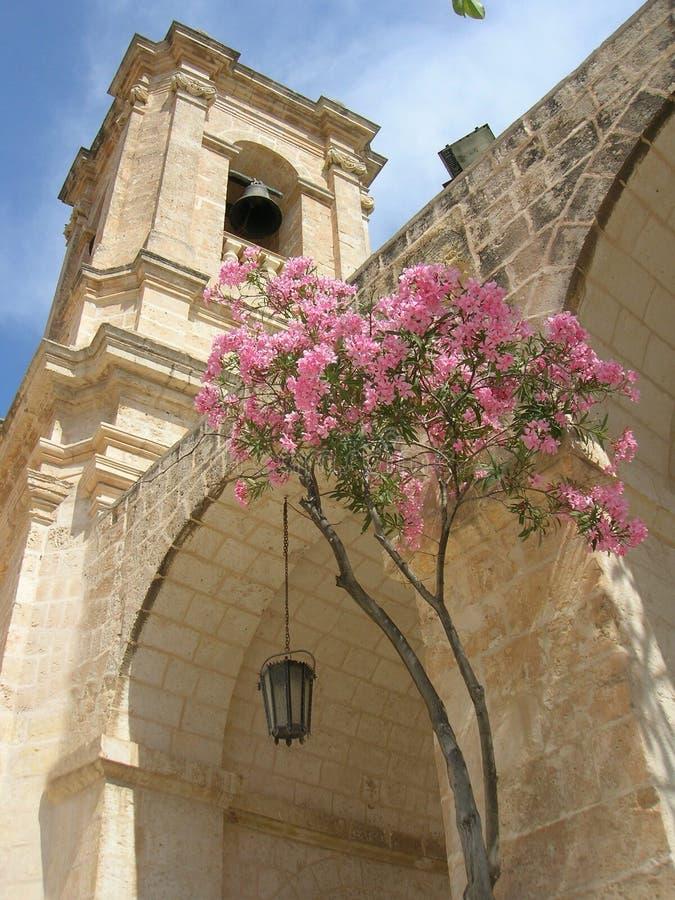 Église et arbre photographie stock