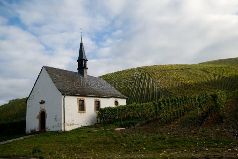 Église et vignes photo stock