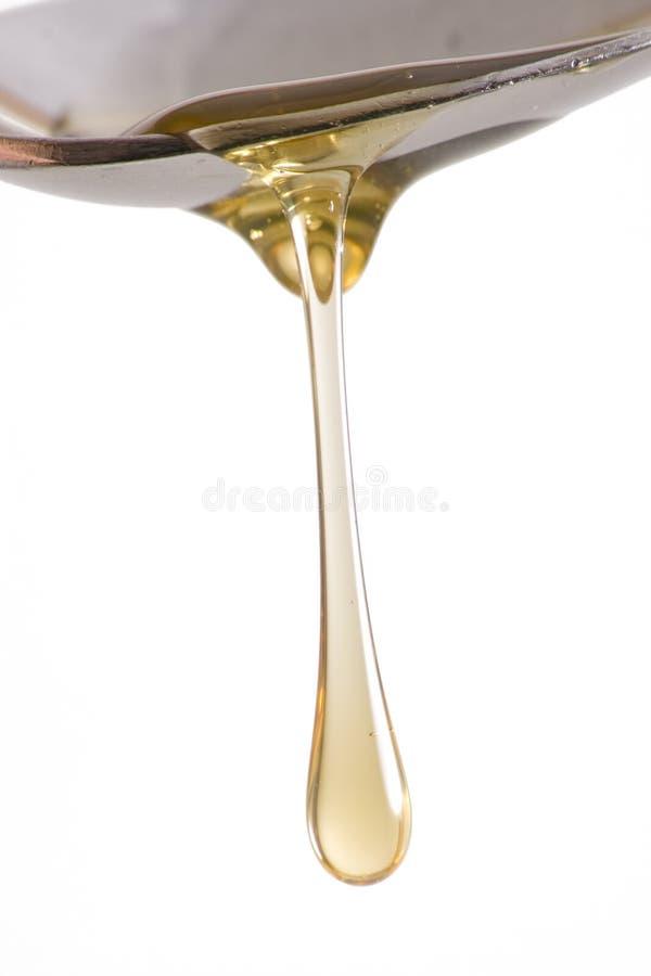 Égouttement de miel de cuillère photographie stock libre de droits