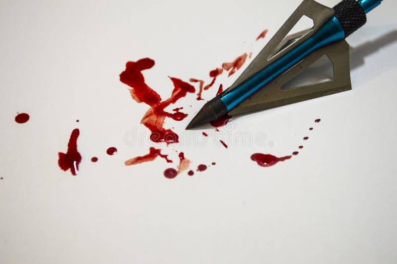 Égoutture principale de flèche avec le sang images libres de droits