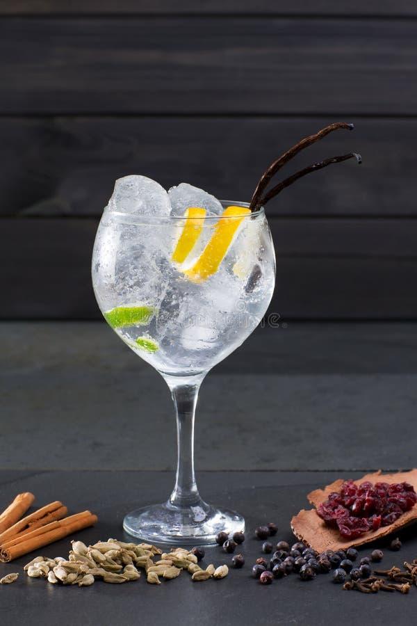 Égrenez le cocktail tonique avec la vanille Lima de glace et les épices diverses images stock